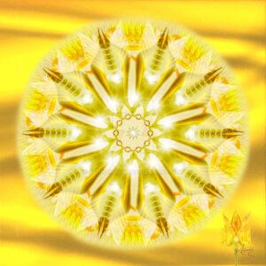 solar_chakra_seal_of_protection_by_ashnandoah-d6igmmu